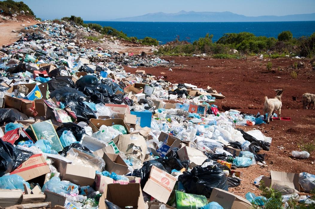 buoni propositi zero waste