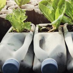 zero waste living principio riutilizzare